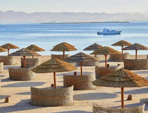 Sheraton Sharm Hotel 5* Soft All Inclusive Sharm El Sheikh
